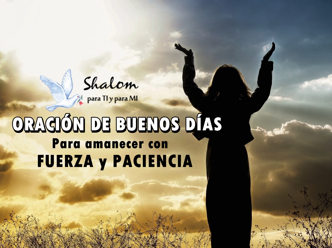 Buenos Dias Shalom Para Ti Y Para Mi Part 3